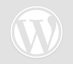 Scalping nel Forex Online