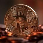 Su quali criptomonete investire?